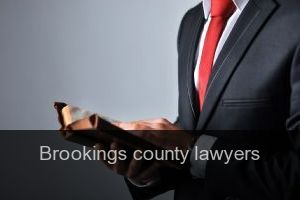 Brookings county Lawyers